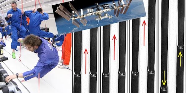 Ecoulement à bulles dans un caloduc oscillant en impesanteur pendant un vol parabolique (ESA, Novespace)